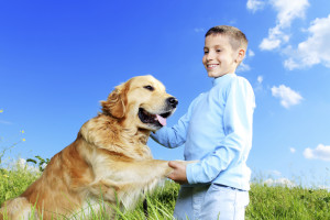 Autism Service Dogs Offer More than Companionship