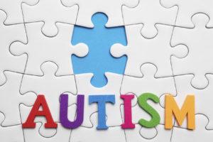The Autism Puzzle Piece